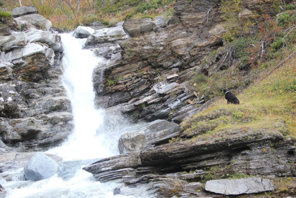 Vattenfall, hur mår du? Det är härligt men svårt och vått att sjunga med ett vattenfall.....