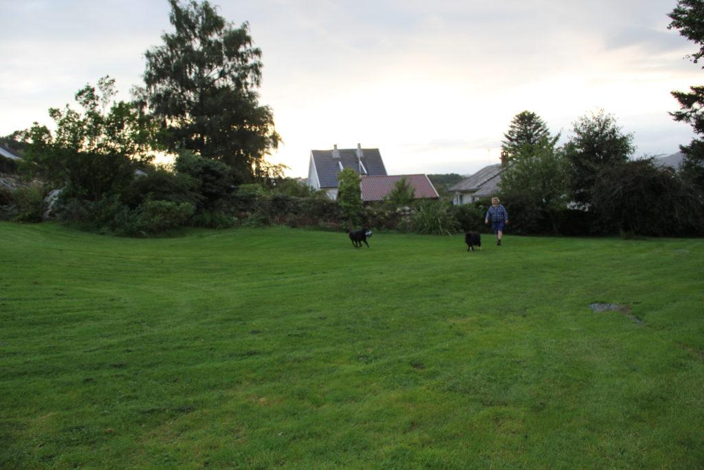 Här trivs vi gott, i Pers fruktträdgård i Hjelmeland